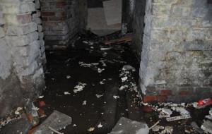 Po rewitalizacji wycięli rury, teraz zalewa piwnicę