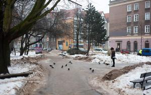 Za niskie wymagania wobec przebudowy skweru przy ul. Szerokiej?