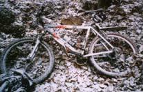 Jar Raduni zimą; edycja 1