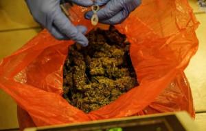 250 kg narkotyków nie dotarło do Trójmiasta