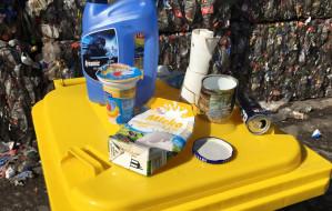 Podpowiadamy, jak segregować śmieci
