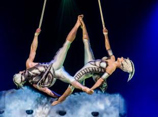 Podróż w mikrokosmos z Cirque du Soleil. O spektaklu