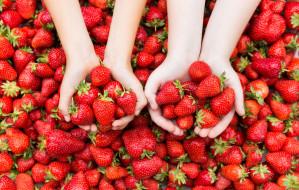 Czy warto jeść truskawki?