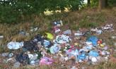 Śmieci zalegają nad Jeziorem Wysockim na Osowej