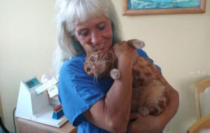 Koci terapeuta w Domu Pomocy Społecznej w Sopocie