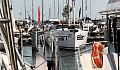 Namiastka Monako w Gdyni. Trwają Targi Wiatr i Woda