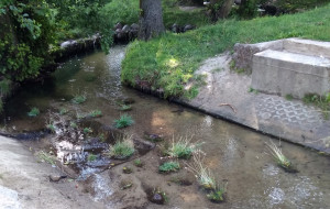 Co z nowymi kładkami nad rzeką Kaczą?