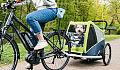 Rowerowy spacer z psem
