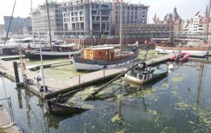 Wrak jachtu od dwóch lat zalega w marinie w Gdańsku
