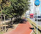 Jak poruszać się rowerem po Trójmieście?