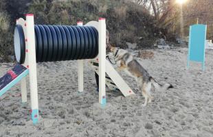 Nowa psia stacja na plaży w Brzeźnie