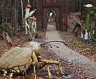 Nowe atrakcje w ogrodzie botanicznym w Gdyni