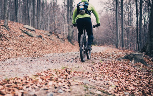 Aktywny weekend w terenie: rower, wędrówka, orientacja