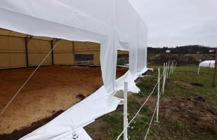 Problemy gdyńskiej stajni: podpalenie i zniszczony namiot