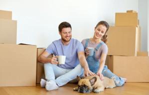 Wynajem mieszkania ze zwierzakiem to utrapienie?