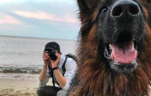 Poskramiacz psów: miłość do zwierząt odmieniła jego życie