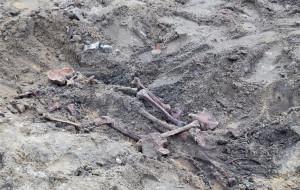 Szkielet z II wojny na terenie budowy na Strzyży