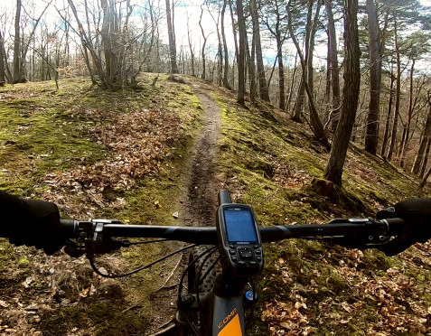 Leśne trasy rowerowe: pasmo wzgórz Pachołka