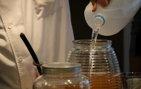 Najzdrowsza herbata świata będzie produkowana w Gdyni