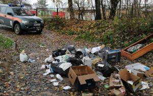 Posprzątaj śmieci na Oksywiu i odbierz sadzonkę