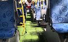 Murawa w trolejbusie z okazji piłkarskich mistrzostw