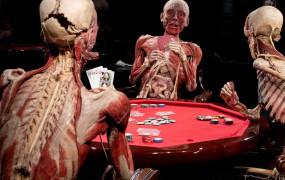 Wystawa Body Worlds jeszcze tylko przez 2 tygodnie w Trójmieście