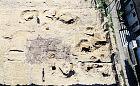 Znaleziska z epoki żelaza na Oksywiu