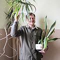 """""""Rośliny wspólne"""". Książka o roślinach na gdyńskich klatkach schodowych"""