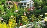 Będą nowe ogródki za działki zlikwidowane pod Nową Bulońską