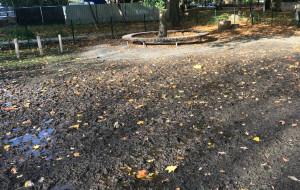 Piasek zastąpi trawnik na wybiegu dla psów w parku Centralnym w Gdyni