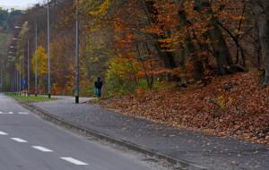 Gdynia: wygodniej dla pieszych i rowerzystów na Małokackiej