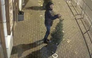 Ukradł świąteczne lampki sprzed restauracji