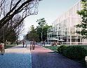 Analizujemy projekt planu dla pasa nadmorskiego w Brzeźnie