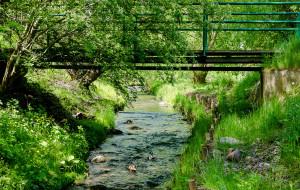 Jak zagospodarować rzekę Kaczą?