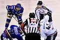 Lotos PKH Gdańsk - Podhale Nowy Targ 1:3. Przegrana przed piątkowym play-off