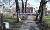 Pomazali pnie drzew w parku na Biskupiej Górce