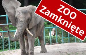 Zamknięte zoo. Schroniska z ograniczeniami