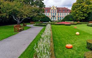 Gdańsk zamyka park Oliwski i parkingi nadmorskie