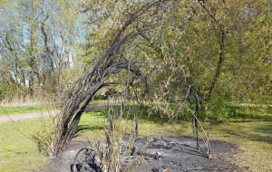 Zatrzymano wandali, którzy zdemolowali zieleniec w Oliwie