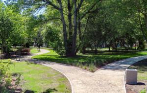 Gdynia: mieszkańcy mogą odpocząć w parku przy Estakadzie