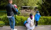 Wielu gości w zoo. Bilety tylko online