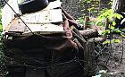 Szałas owinięty drutem kolczastym to budka dla kotów