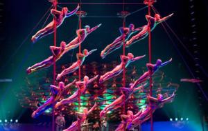 Wielki cyrkowy show w Ergo Arenie