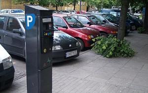 Gdynia: jedyne takie parkomaty w Polsce
