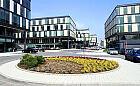 Sony zatrudnia księgowych w Gdyni