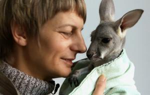 Pracownica ZOO wychowuje kangurzątko