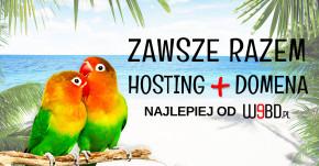 Rok hostingu i domeny gratis!