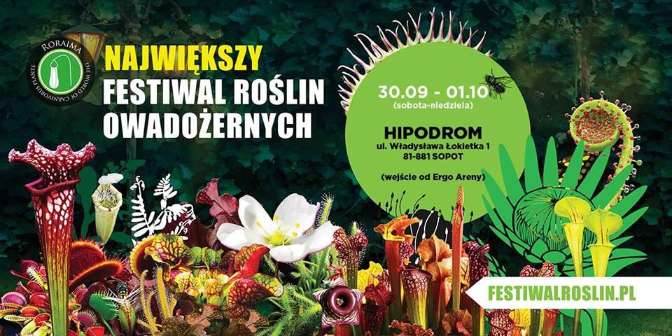 Фестиваль Насекомоядных Растений в Сопоте в эти выходные