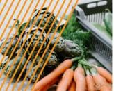 Razem przeciwko marnowaniu żywności - konferencja