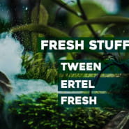 Fresh Stuff / Tween / Ertel / Fresh